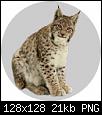 Klicken Sie auf die Grafik für eine größere Ansicht  Name:Badge_Lynx.png Hits:2 Größe:21,5 KB ID:5987