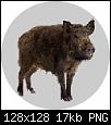 Klicken Sie auf die Grafik für eine größere Ansicht  Name:Badge_Boar.png Hits:0 Größe:17,0 KB ID:5933