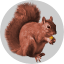 RakeSearch Badge Squirrel 25k.png
