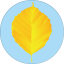 Badge 2018-10 Leaf Yellow.png